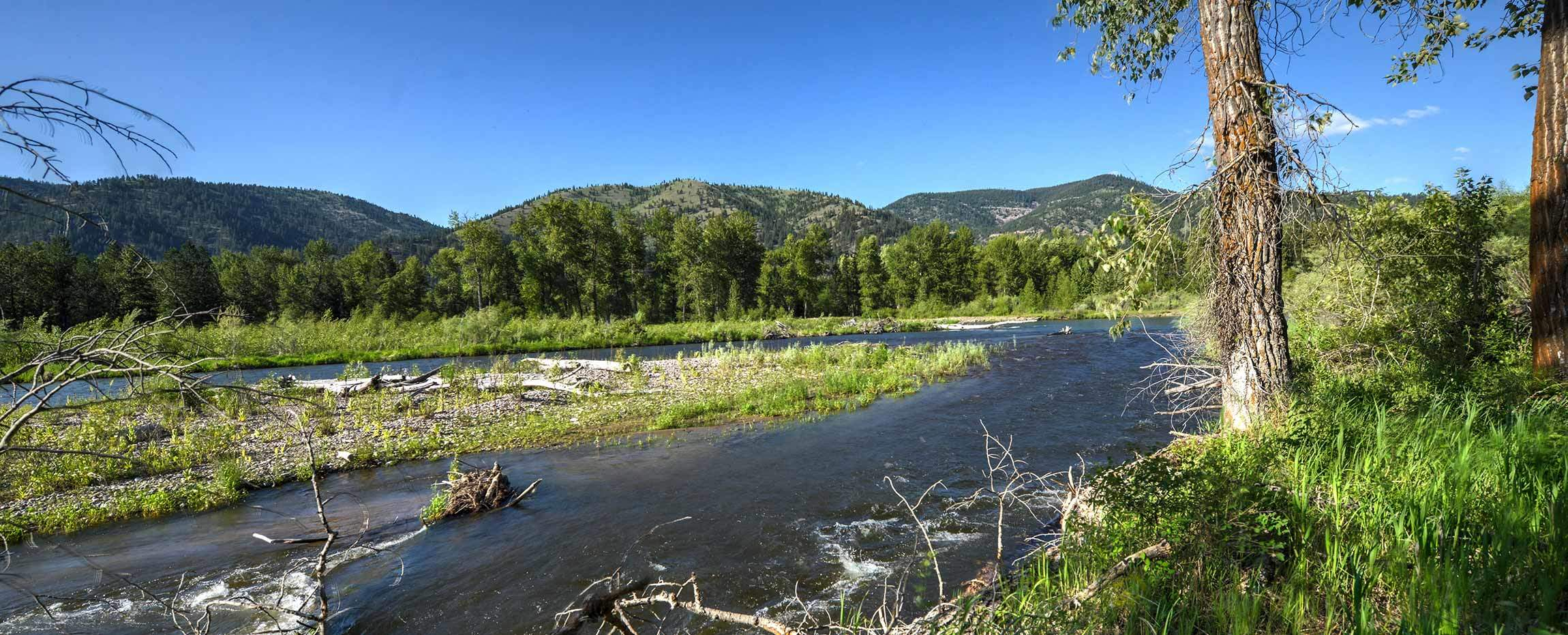 Clark Fork River Reserve